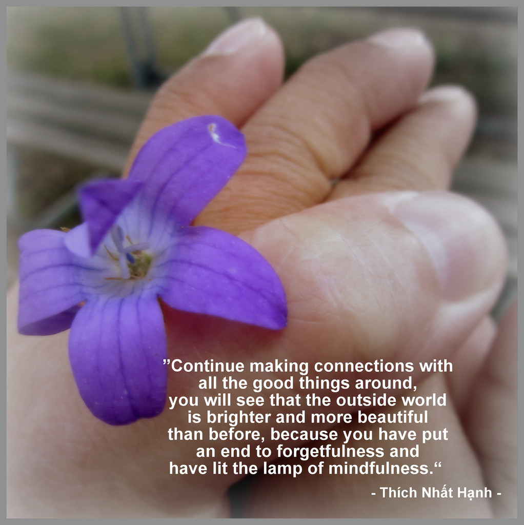 Thict Nhat Hanh Quote
